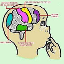 EEG-Neurofeedback Praxis, Marina Staudacher, Effretikon ZH
