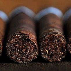 Bender Cigarren