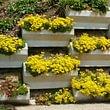 mur en éléments avec fleurs vivaces