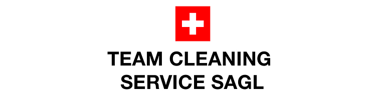 Team Cleaning Service Sagl