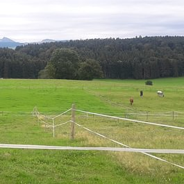 Ranch du p'tit bonheur