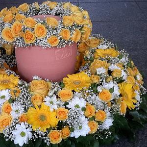 Blumen Fischer GmbH