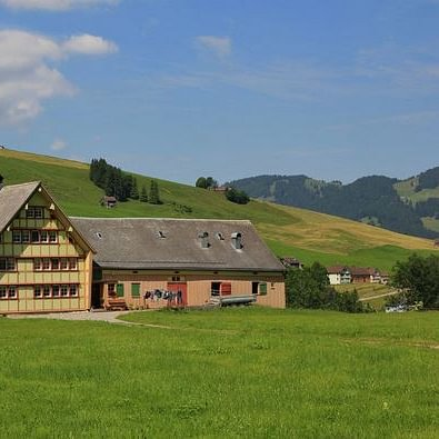 Lindenbaum Immobilien GmbH