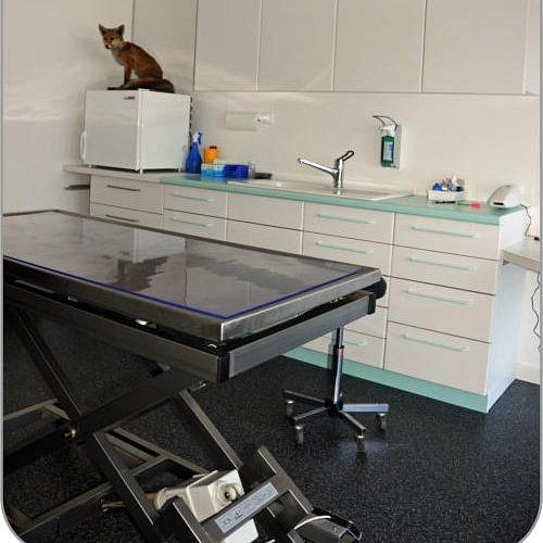 Cabinet vétérinaire d'Avry Bourg Fribourg,