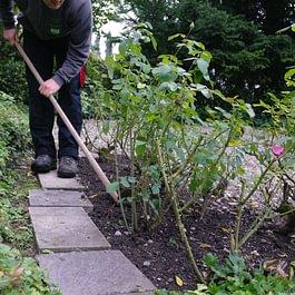 Auch Gartenunterhalt im Abo gehört zu unseren Hauswartungsaufgaben.
