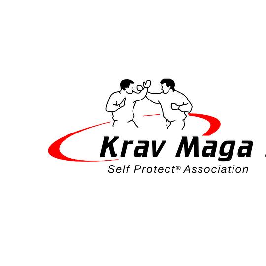 Krav Maga Self Protect Liestal