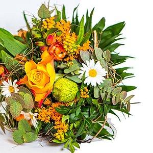Floralia Gartencenter AG