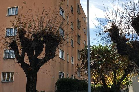 Appartamento 4.5 locali - Via S. Franscini 35 - Bellinzona