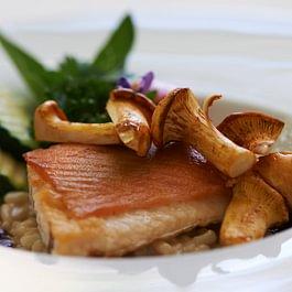 Feine Fischgerichte