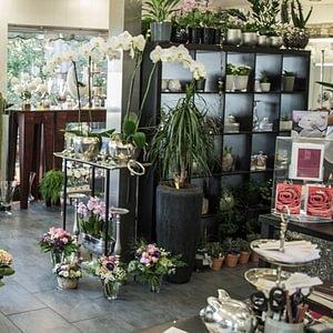 Blumenträff Einsiedeln