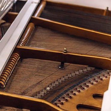 Klavierstimmer Philipp Sonderegger
