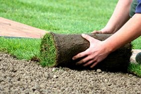 Progettazione e realizzazione parchi e giardini e gestione tappeto erboso