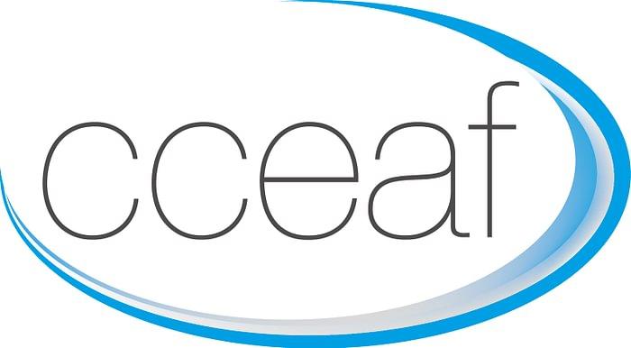 Centre de Consultations Enfants Adolescents Familles CCEAF