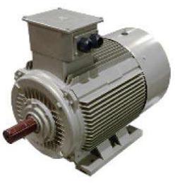 IEC Synchron Reluktanz Motor