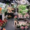Blumengeschäft Swizz Green Winterthur