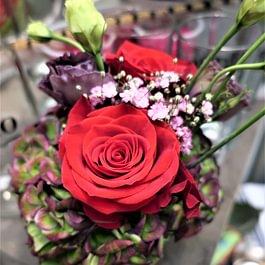 Blumen Habitus, Regula Elmer in Marthalen Weinland