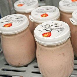 Büffelmich-Joghurt Erdbeer