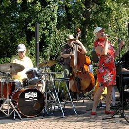 Konzert mit den Egelmoos Groovers am Sommerfest 2015.