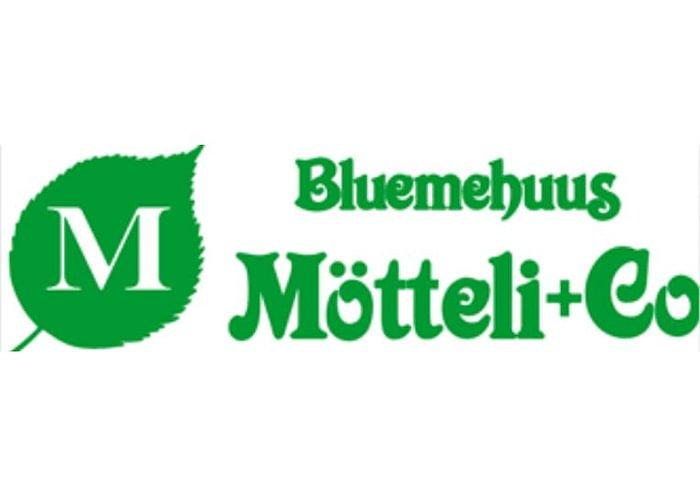 Bluemehuus Mötteli + Co