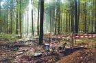 BABU GmbH Büro für Altlasten, Boden und Umwelt