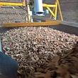 Xylochips mesure d'humidité des plaquettes de bois de chauffage