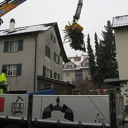 Baum entfernt hinter dem Haus ohne direkte Zufahrt