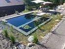Yasiflor Gartenbau Schwimmteiche
