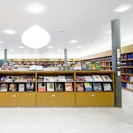 Bibliothek zur Schweizer Kunst und Kunstgeschichte bei SIK-ISEA