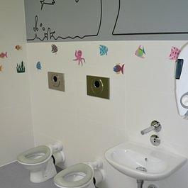 Piralla sanitaire