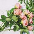 Art de Fleurs
