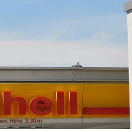 Shell Tankstelle mit Shop