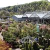 Bacher Gartencenter Auswahl auf 4500m2