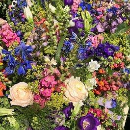 Blumen Vorderberg