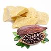 Jojoba Gold Suisse - Beurre végétal de Cacao désodorisé BIO