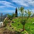 Residence mont des oliviers Cap D'Ail (Montecarlo)