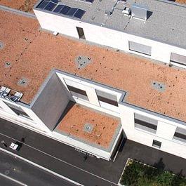 Bernhard Dach & Fassaden AG, Flachdach