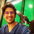 vétérinaire oiseaux