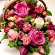 Blumenkochkunst