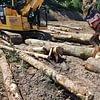 Land - und Forstmaschinen Marcel Hotz, Bauma/ZH