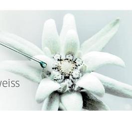 Pure Altitude: une alternative cosmetique naturelle et efficace, grâce à une sélection de plantes rares
