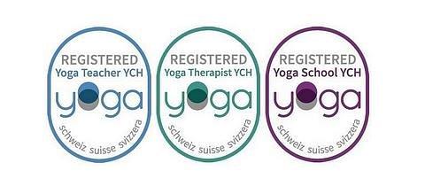 Verband Yoga Schweiz Suisse Svizzera