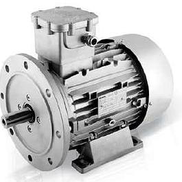 Atex Motor