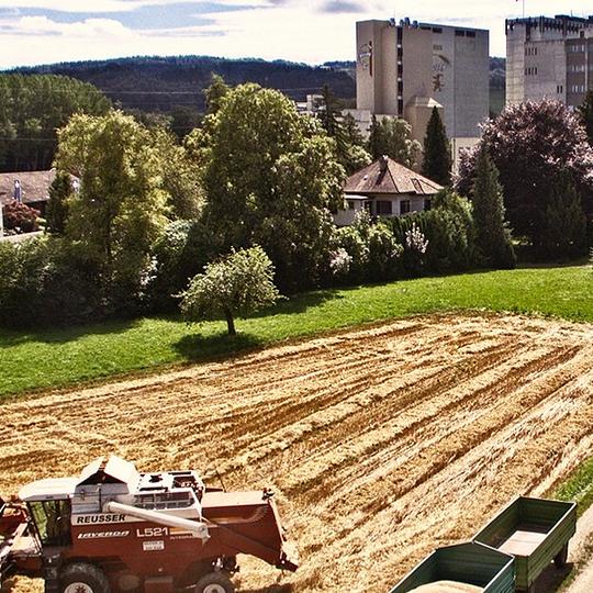 Schweizerische Schälmühle E. Zwicky AG Müllheim-Wigoltingen