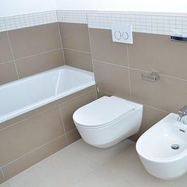 Neubau Badezimmer, Einfamilienhaus in Reinach