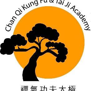 Vient découvrir les arts martiaux chinois dans une ambiance décontractée et familiale. Premier cours d'essai gratuit.