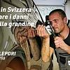 Carrozzeria Marco Lepori - Danni da grandine