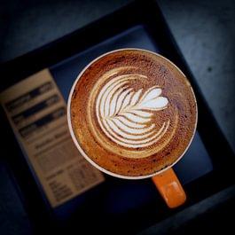 Latte Art, La Marzocco Eversys Elektra, Gastro Kaffeemaschinen, Siebträger, Vollautomat