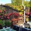Herbstimpressionen auf unserer Gartenterrasse