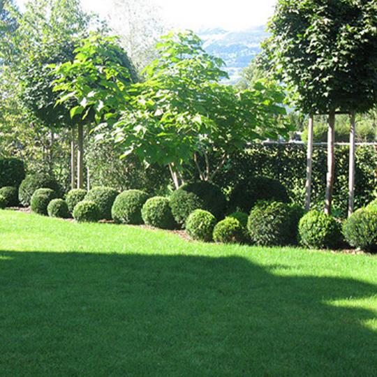 JEHLE Garten + Floristik AG