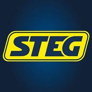STEG Logo